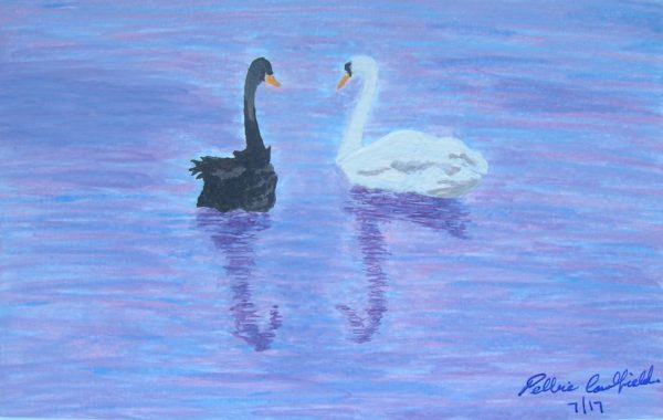 Summer Swans by Winter Ducks