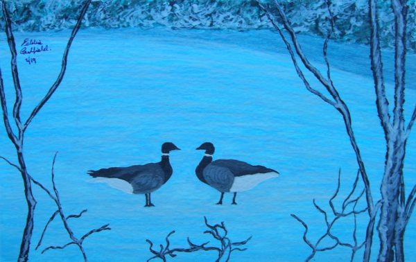 Winter Ducks by Autumn Geese