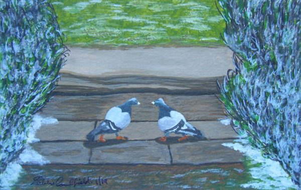 Winter Pigeons by Autumn Geese