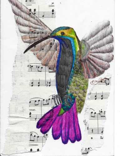 hummingbird-sings-its-song.jpg by indieclairesillustrations
