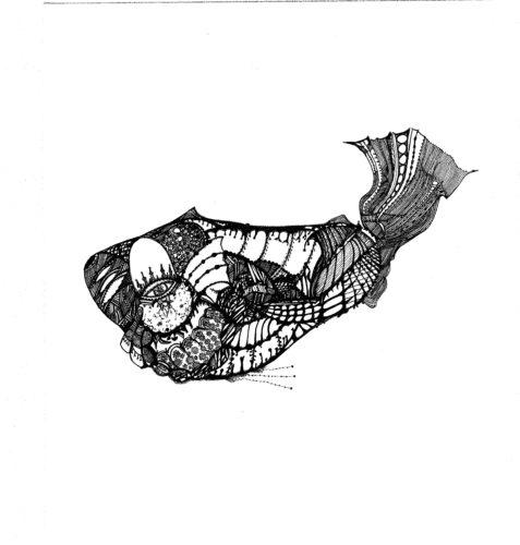 Fish by Mark Francis-Jones