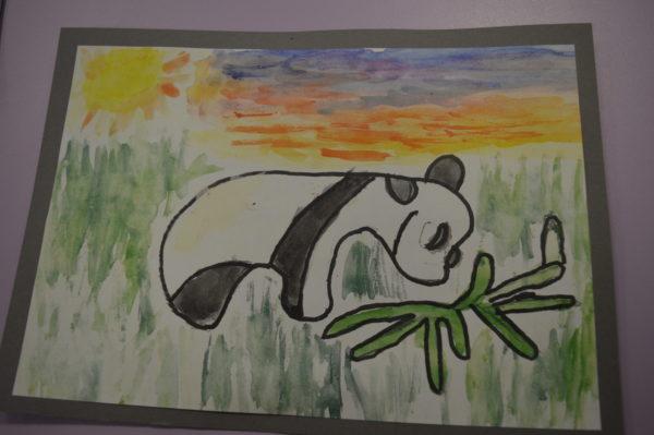 Panda eating grass under the sun by Shaun Thacker