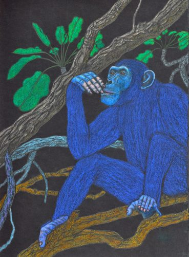 Young Teenage Chimpanzee Thinking by Larry Paul Strang
