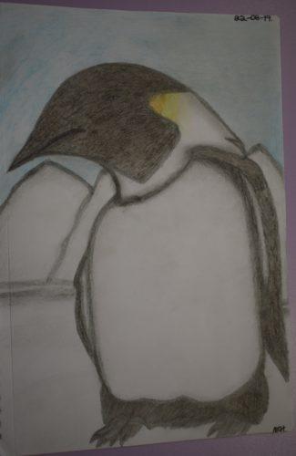 Penguin by Melissa Hamilton