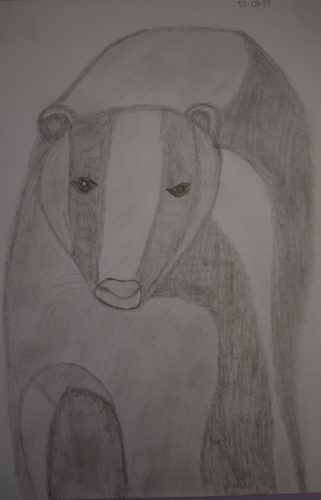 Badger by Melissa Hamilton