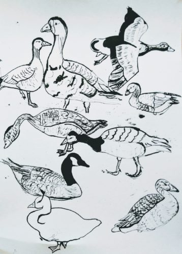 Geese Practise by Kate Rolison