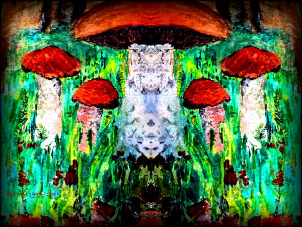 stein pilz by Surreal and Psychedelic