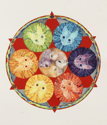 Cat Mandala by Sheila