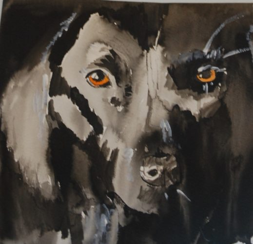 Black Dog by Maya Davis