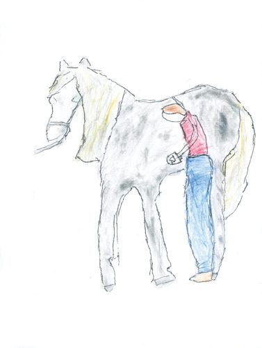 Horse Riding by Anna Harper
