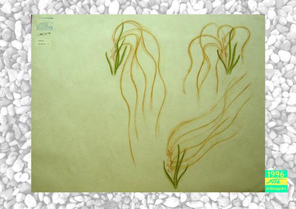 plant by Silke Wolff
