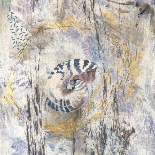 Memento Mori: Nautilus by Michelle  Rodrigues