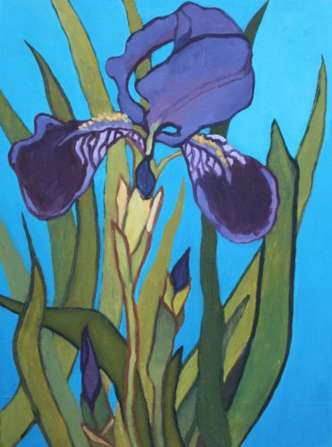 Spring Purple Iris by CLARE GRAVENELL