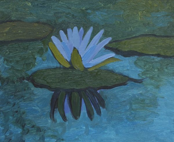 Waterlily by CLARE GRAVENELL