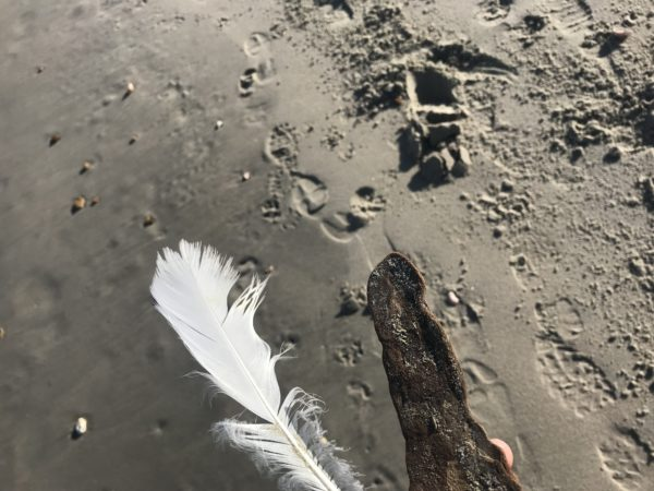 walk.. reflect by Samantha Sugars