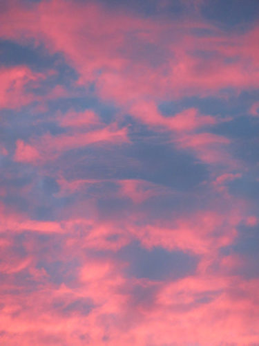 Red sky at night, Londoners delight by Sally Case