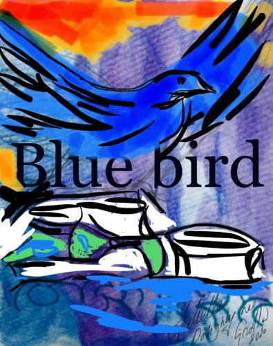 The Blue Bird series by Juliette Goddard