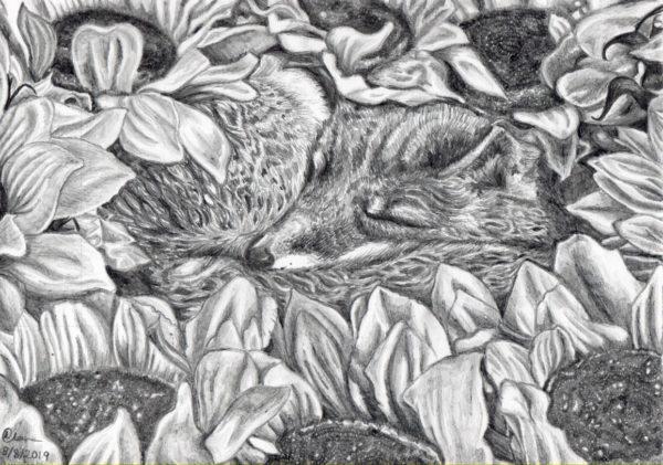 Sleeping amongst the sunflowers. by Lorna-Belle Harty