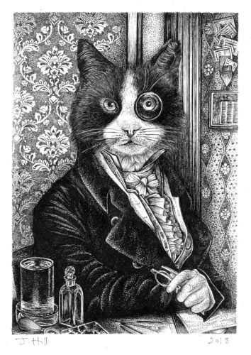 Gentleman Cat by Hare & Daisy