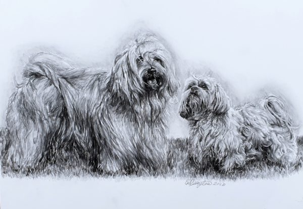 Sophie and Suzi by Rebecca Taylor Graphite Artist