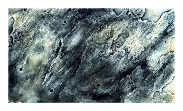 Tidal Pull by Joanna Cohn