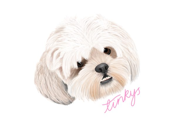 Tinkys by Livvy Rose Studio