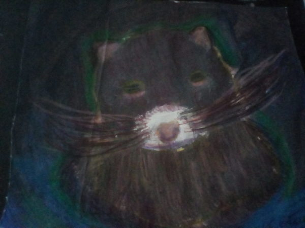 Rescue ferret by Kaya Nikita