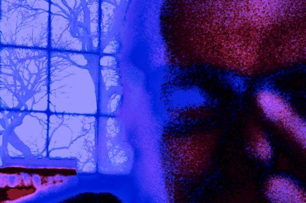 RED Self PortraitD