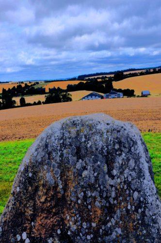 Stone Farm by REaD Rhymes