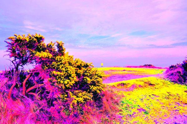 Candy-Heath.jpg by REaD Rhymes