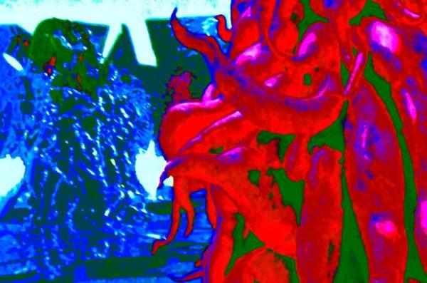 Damien-Octopus.jpg by REaD Rhymes