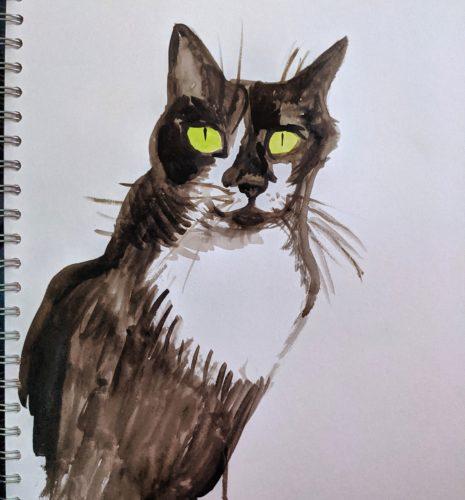 Spotnose aka bincat by Ana Tewson-Bozic