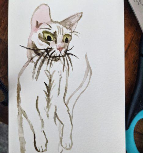 Cat postcard by Ana Tewson-Bozic