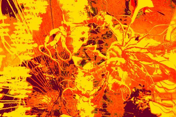 Gorgon.jpg by REaD Rhymes
