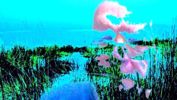 ikengrassportrait.jpg by REaD Rhymes