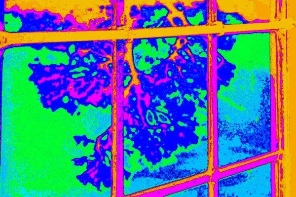 Orange-Window.jpg by REaD Rhymes