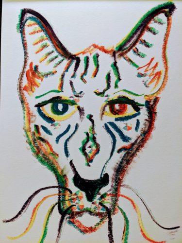 Coyote by Ana Tewson-Bozic